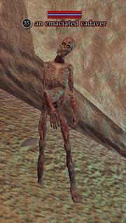 An emaciated cadaver
