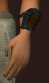 Arctic Frostwind Oracle's Bracers (Equipped).png