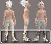 Vagabond's Chain Shoes (Equipped)