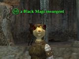 A Black Magi insurgent