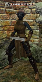 A Bloodsaber highguard (dark elf)
