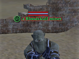 A Bloodskull miner