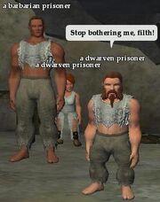 A dwarven prisoner