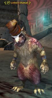 A risen shaman