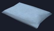 Damask pillow (Visible)