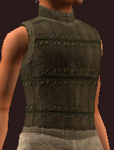 Imbued Dexterous Tanned Tunic (Equipped)