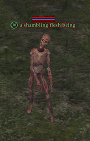 A shambling flesh being