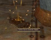 Gather Burnt Gnomish Object