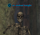 An undead knight