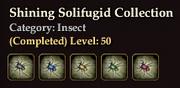 Shining Solifugid Collection