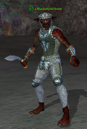 A Blackshield brute (Timorous Deep) (troll)