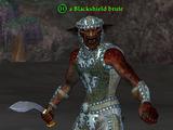 A Blackshield brute (Timorous Deep)