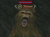 Tirinor