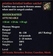 Pristine bristled leather satchel