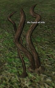 The hand of nife