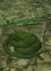 A measly filthy moccasin