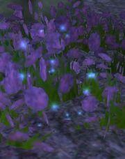 A Lujien Fang - Flowers
