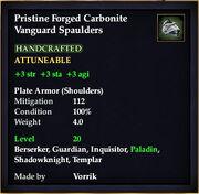 Carbonite Vanguard Spaulders