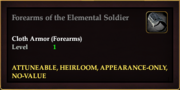 Forearms of the Elemental Soldier