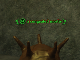 A congealed mortis