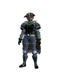 Divine Spirituality (Armor Set) (Visible, Female)