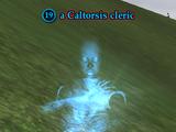 A Caltorsis cleric
