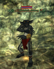 A Gobblerock shaman