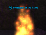 Protectors of the flame