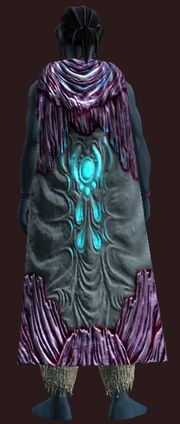 Spellwoven Luminous Chitin Cloak equipped