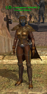 A courageous defender (dark elf)