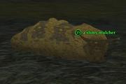 A slimy mulcher