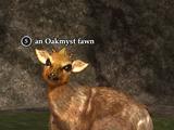An Oakmyst fawn