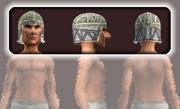 Sensei's Skullcap (Equipped)