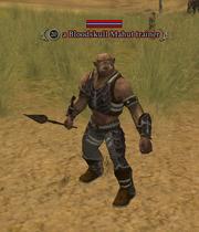 A Bloodskull Mahut trainer