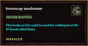 Browncap mushroom
