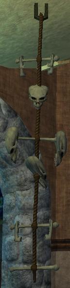 A bone fixture (Visible)