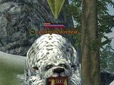 A sootpaw direbear