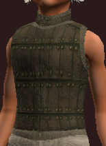 Wanderer's Rare Hide Tunic (Equipped)