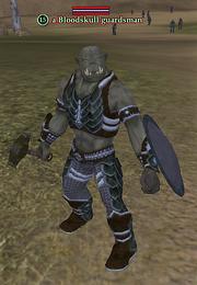A Bloodskull guardsman