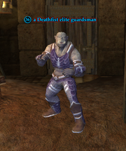 A Deathfist elite guardsman