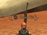Zhao Wu