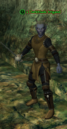 A Darkblade brigand (dark elf)