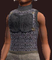 Etherhorde ringmail tunic (Equipped)