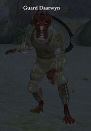 Guard Daarwyn