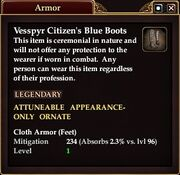 Vessp Citizen Blue Boots