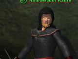 Ambassador Raflin