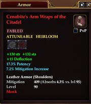 Cenobite's Arm Wraps of the Citadel
