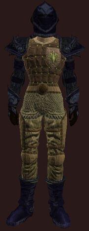 Plate Armor of Demolishing(Worn)