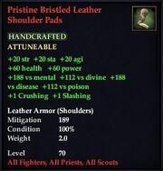 Pristine Bristled Leather Shoulder Pads