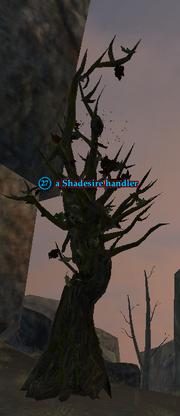 A Shadesire handler